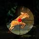 Target Safari Deer Hunter 2016