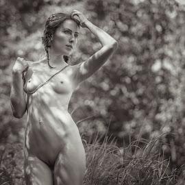 Summer by Dmitry Laudin - Nudes & Boudoir Artistic Nude ( figure, nude, girl, grass, beautiful, summer, sun )