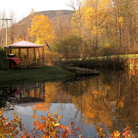 Golden Days by Dorothy Koval - Landscapes Waterscapes ( mountain pond, autumn, foliage, fall, tent, reflections, lake, vermont, pond, gazebo, golden days, outdoor eating )