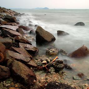 by Mohd Shahrizan Taib - Nature Up Close Rock & Stone
