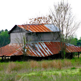 BARN  ALMOST GONE by Douglas Edgeworth - Buildings & Architecture Decaying & Abandoned