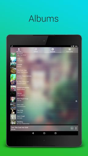 Audio Player screenshot 16
