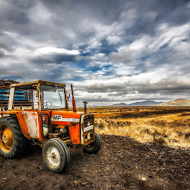 Tractor and Peat Bog Turf by Thorbjorn Liell - Transportation Other ( work, field, ireland, transport, peat bog, turf, kerry, tractor, farming )
