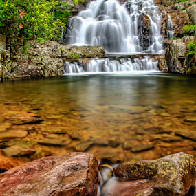 At Hickory Run State Park by Dave Martin - Nature Up Close Water (  )