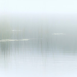 Stroan Loch by James Johnstone - Abstract Patterns ( stroan, loch )