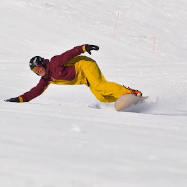 Carving by Bruna Pohl - Sports & Fitness Snow Sports ( ride, snowboard, speed, snow, powder, white, carving, day, people, sun, angle, snowboarding )
