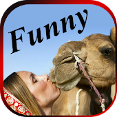 FUNNY VIDEOS : Latest Indian Comedy Clips App APK for Bluestacks