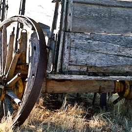 Old Wagon by D.M. Russ - Artistic Objects Other Objects ( d. m. russ, wagon, old west,  )