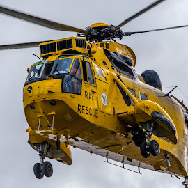 Raf Sea king Helicopter by David Charlton Photos - Transportation Helicopters