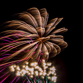 Frozen Fireworks by Chris Olson - Abstract Fire & Fireworks ( frozen fireworks, fireworks )
