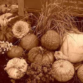 Fall's Bounty by Lenora Popa - Nature Up Close Gardens & Produce ( sepia, fall, nature up close, gourds, harvest )