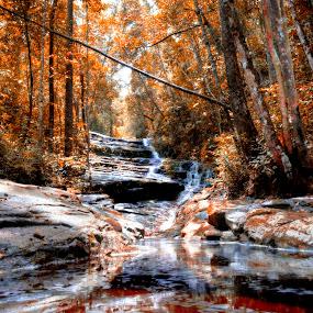 Flowing by Nadzli Azlan - Landscapes Forests