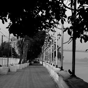 Walkway  by Sudipta De - Novices Only Street & Candid