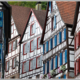 Schiltach, Black Forest. by Andrea Macherelli Bianchini - Buildings & Architecture Homes ( home, deutschland, building, houses, europe, patterns, colors, street, windows, cityscape, house, city, roof, window, pattern, roofs, buildings, black forest, germany, homes,  )