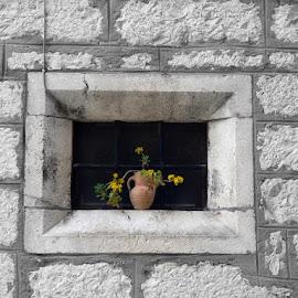 framed by Mladen Stoposto - Artistic Objects Still Life ( vase, frame, window, flower )