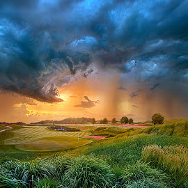 Playing Through by Phil Koch - Landscapes Prairies, Meadows & Fields ( golfcourse, canon, wisconsin, arts, joy, storm, sun, course, love, shadow, dramatic, golf, flowers, light, rain, inspired, clouds, trending, grass, green, beautiful, camera, shadows, rural, environment, fineart, season, blue, unity, outdoors, peace, popular, summer, earth, sunrise, hope, inspirational )