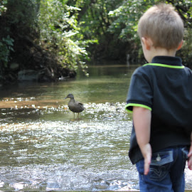 Jacob looking a duck in the creek by Kim Tindol - Novices Only Wildlife
