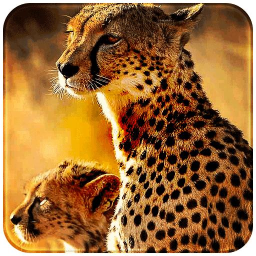 Golden Leopard King