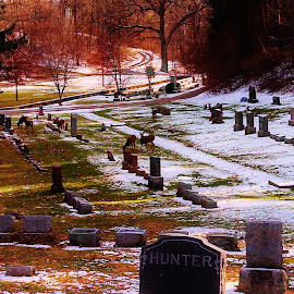 The Hunter .. and His Bounty  by Dee Shahan - City,  Street & Park  Cemeteries