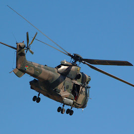 SA Army helicopter by Andre Beetge - Transportation Helicopters ( helicopter, army, flight, fly, south africa )
