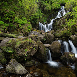 Torc Waterfall by Jirka Vráblík - Landscapes Forests ( forest, waterfall, killarney, torcwaterfall, landscape, ireland )