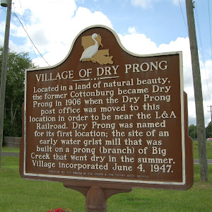 Located in a land of natural beauty, the former Cottonburg became Dry Prong in 1906 when the Dry Prong post office was moved to this location in order to be near the L&A Railroad. Dry Prong was named ...