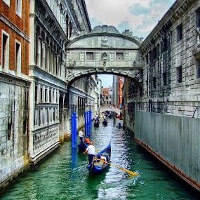 Ponte dei Sospiri by Ana Paula Filipe - City,  Street & Park  Street Scenes ( sospin, bridge, veneza )