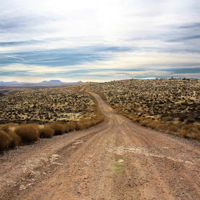 Escape by Monica Lawlis - Landscapes Deserts ( desert, beautiful, road )