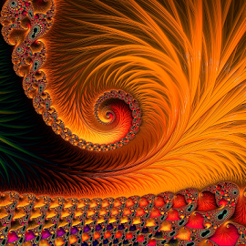 Orange fractal  by Capucino Julio - Illustration Abstract & Patterns ( abstract, orange, fractal, floral, design )