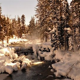 Snow on the River by Kristina Woodward-Roth - Novices Only Landscapes ( winter, ice, snow, trees, river )