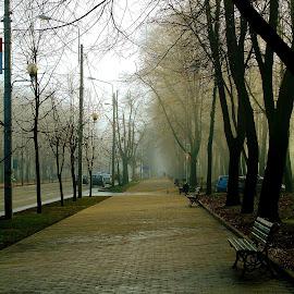 by Izvorul Muntelui Bicaz - City,  Street & Park  Street Scenes