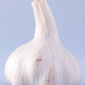 Garlic  by Worowsky Papa - Food & Drink Ingredients ( garlic, food, spice, white, ingredient )