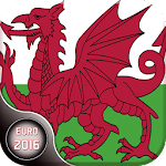 Head Soccer EURO 2016 Wales APK Image