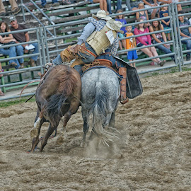 Pickup Rider by Twin Wranglers Baker - Sports & Fitness Rodeo/Bull Riding (  )