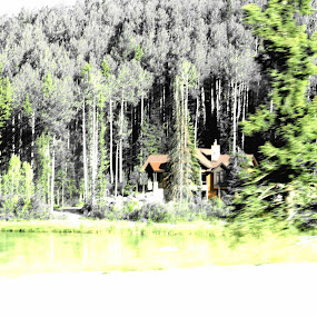 by Keysha Wallace-Patton - Nature Up Close Trees & Bushes