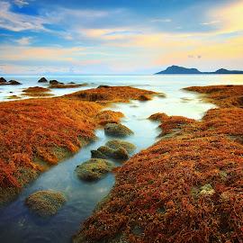 pantaiku bersemi by Eddy Due Woi - Landscapes Sunsets & Sunrises