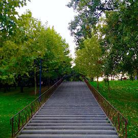 Stairway to autumn by Bogdan Ciobanu - City,  Street & Park  City Parks ( stairs, stairway, autumn )