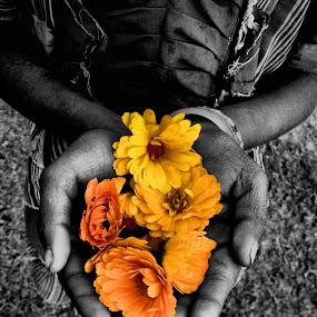 Belief by Biraj Dutta - People Street & Candids ( hand, slum, belief, b&w, street, black & white, marigold, yellow, flower, kid )
