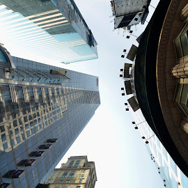 Look! up. by Sam Park - Buildings & Architecture Office Buildings & Hotels ( cool, look, building, sky, timessquare, architecture, newyork )