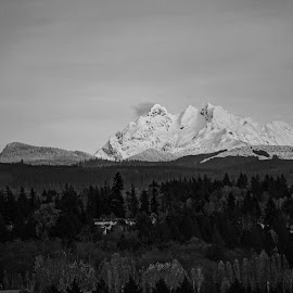 Three Fingers  by Todd Reynolds - Black & White Landscapes