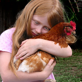 Cuddle by Wayne Harlech-Jones - Babies & Children Child Portraits ( love, chicken, child, chook, pat, friends, girl, pet, cuddle, friend, hen,  )