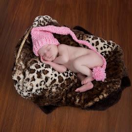 by Helen Bagley - Babies & Children Babies ( baby portrait, newborn photography, baby girl, baby, baby photography, newborn )