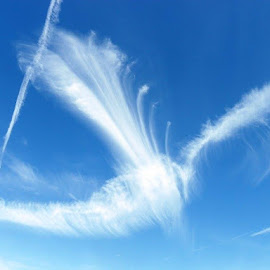 by Caroline Blake - Landscapes Cloud Formations