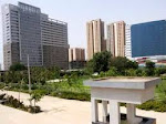 Commercial Sale Purchase in Gurgaon