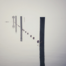 Lake Stevens  by Todd Reynolds - Artistic Objects Still Life