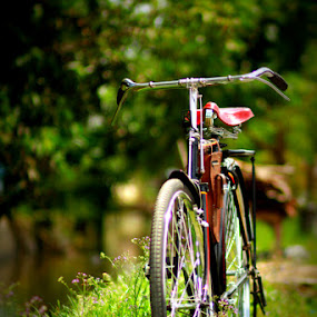 by FJ FJ - Transportation Bicycles