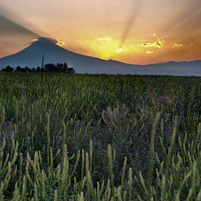 Sunset and volcano by Cristobal Garciaferro Rubio - Landscapes Mountains & Hills ( rise, sunset, mexico puebla, puebla, popocatepetl, mexican volcanoes, sunrise, sun )