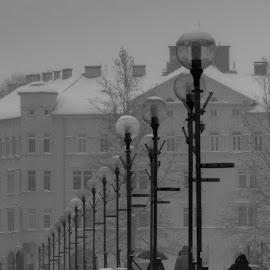 bridge by Dušan Gajšek - Buildings & Architecture Architectural Detail
