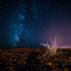 by Maya Bar - Landscapes Starscapes ( milky way )