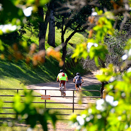 Cycling In The California Hills by Kathleen Koehlmoos - Sports & Fitness Cycling ( bicycle ride, round valley, northern california, round valley regional park, cycling, bicyles, mount diablo,  )